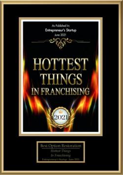 hottestthingsinfranchising2021