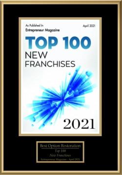 top100_new_franchises_2021